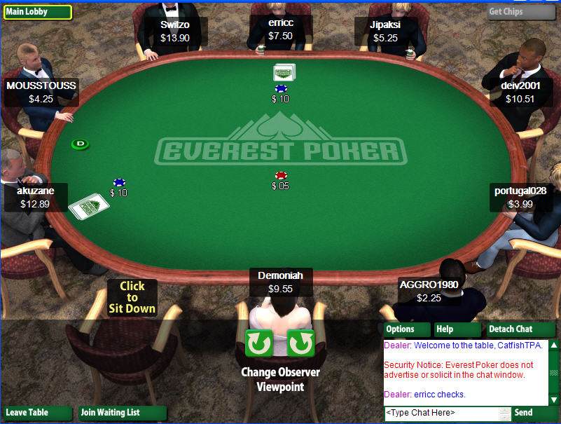 Everest Poker Table View